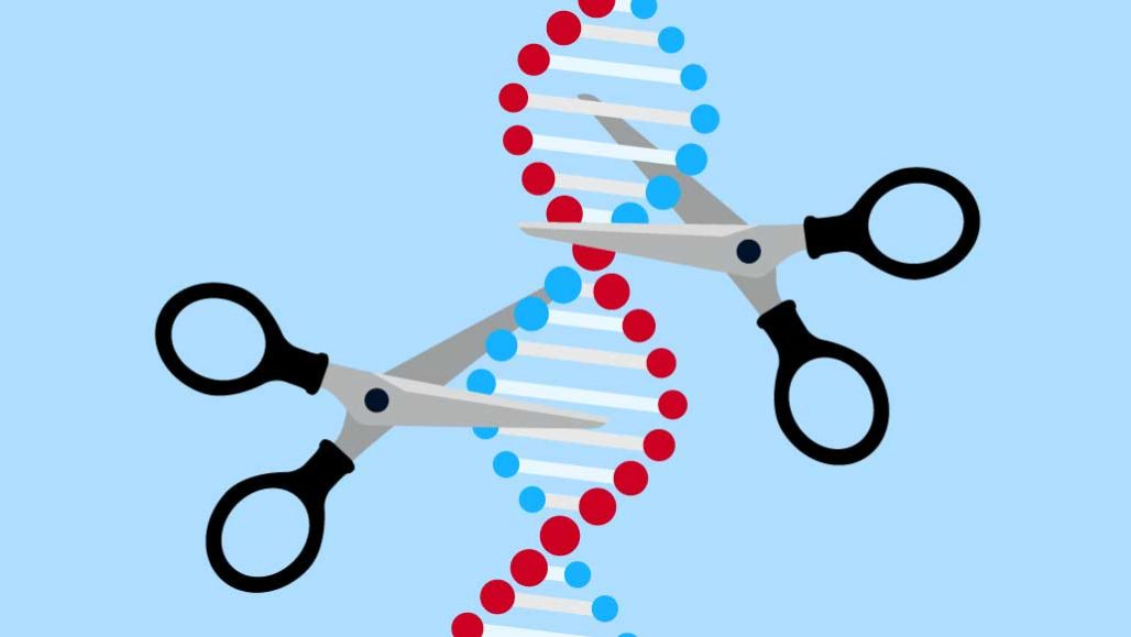 What is CRISPR/Cas9 Technology & How Does it work?